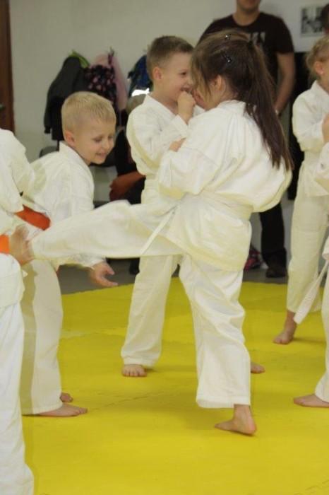 Egzaminy na pasy Furo Karate w VTP Gym w Andrespolu (18)
