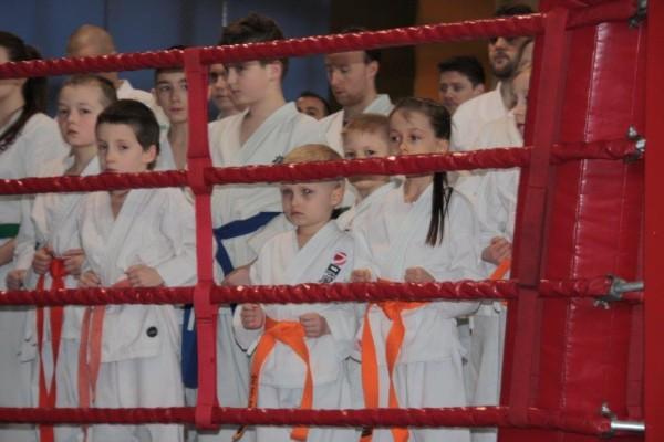 3.Międzynarodowy Puchar Polski Furo Karate 2016 Wiśniowa Góra (3)