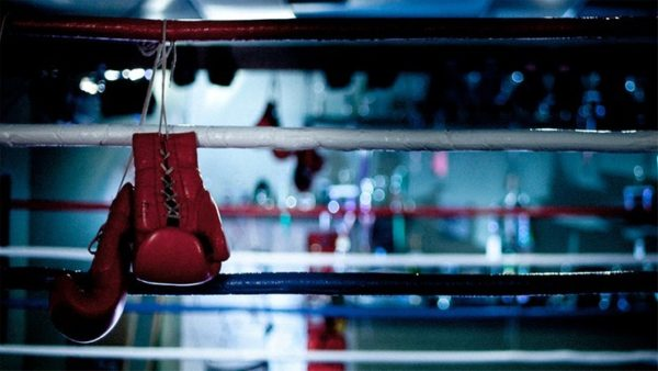 polsat sport fight